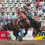 Innisfail Pro Rodeo